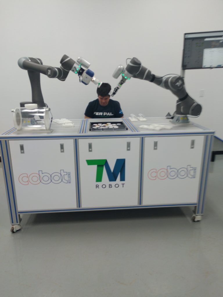 Tm robot waiting for next-level instruction from the programmer